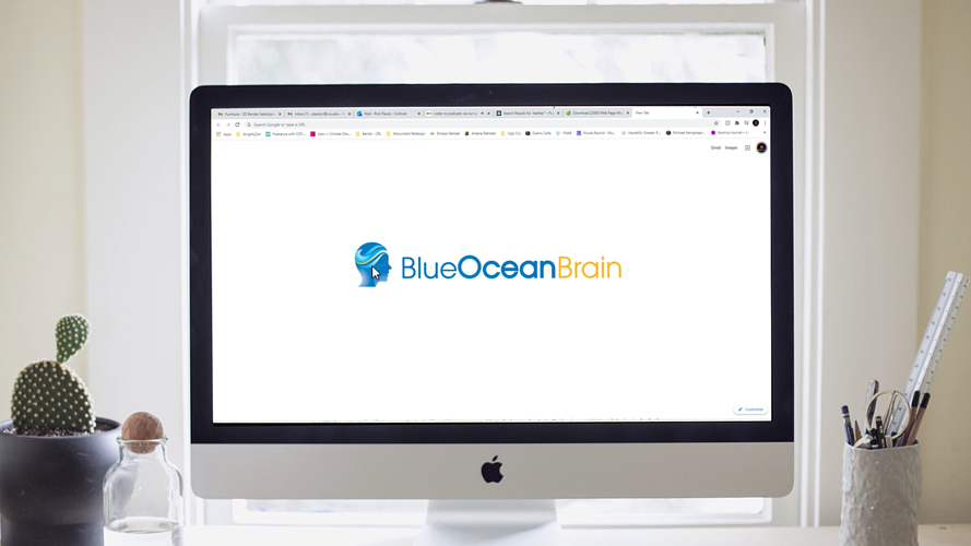 Video: Meet Blue Ocean Brain